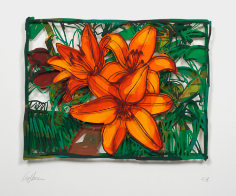 David Gerstein OPEN LILLIES